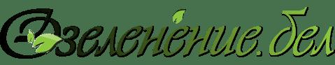 Ландшафтный дизайн, Озеленение и услуги профессионального садовника
